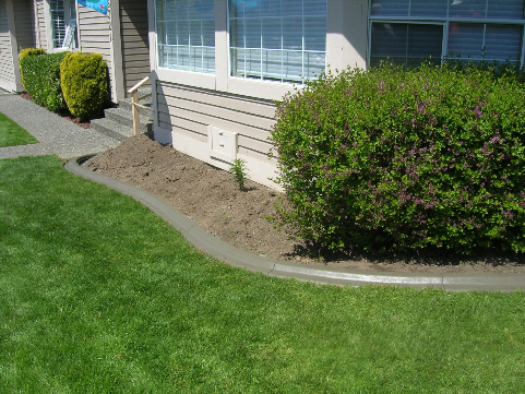 Residential Landscape Curbing for Easy Garden Maintenance - After
